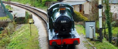 totnes steam train